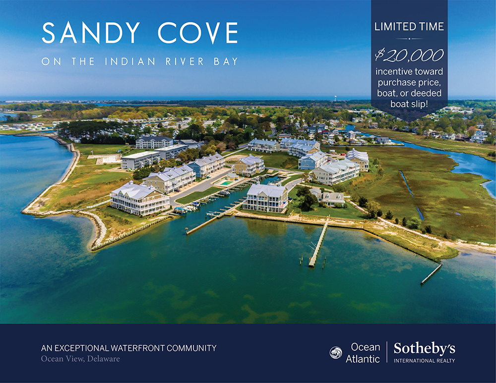 Sandy Cove On The Indian River Bay