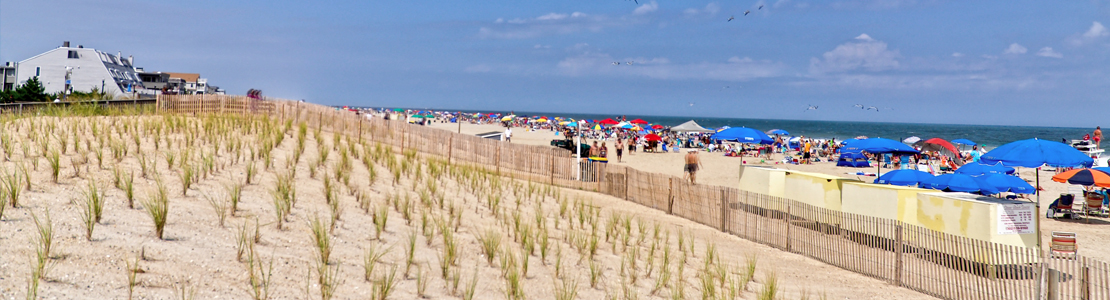 The peaceful dunes of Bethany Beach, Delaware